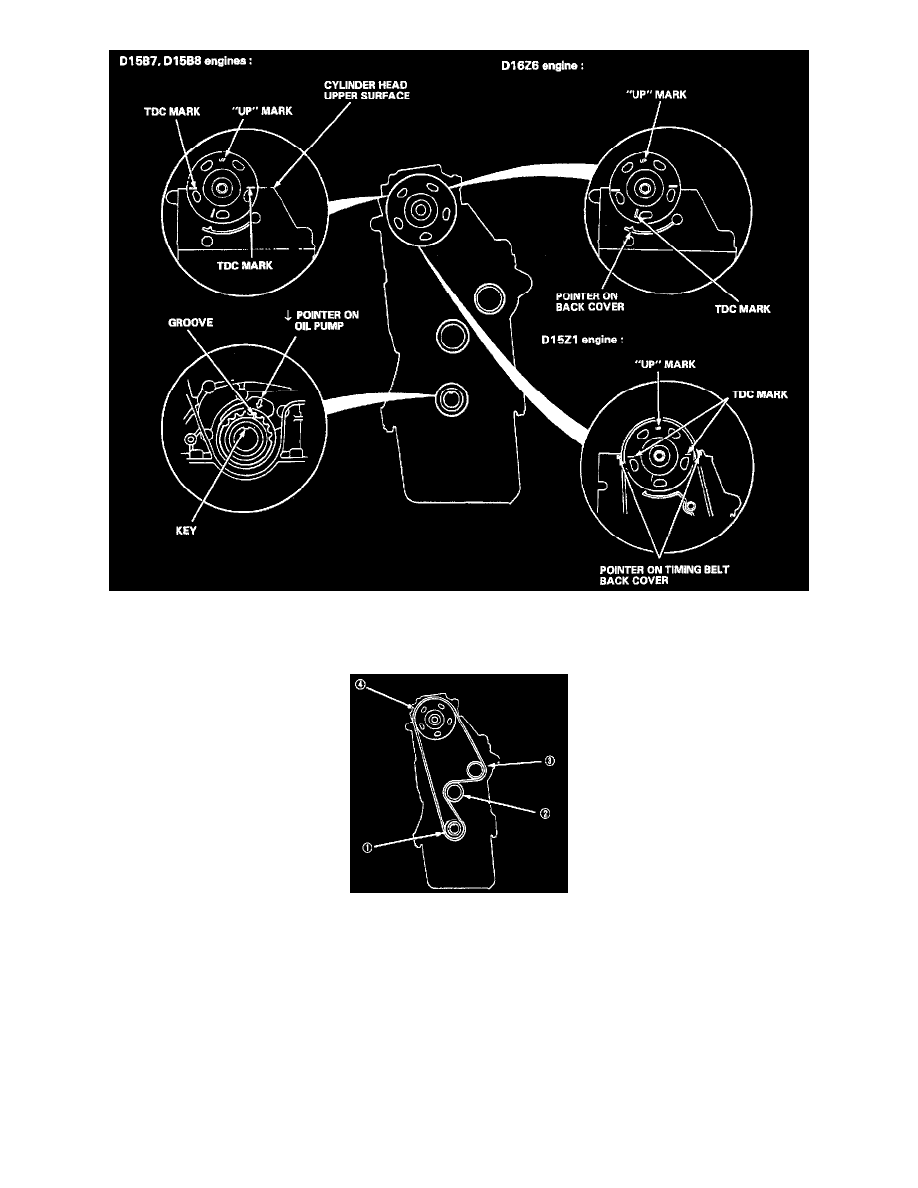 Maintenance > Timing Belt > Component Information > Service and Repair >  Removal and Installation > Page 821